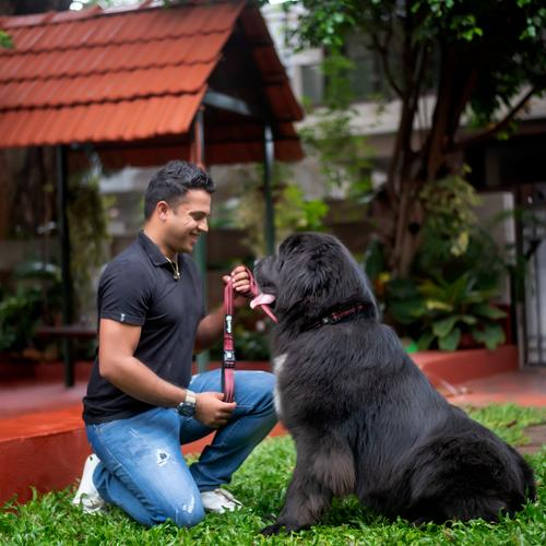 Pet grooming involves undivided, unconditional love, patience and dedication to be a good groomer.